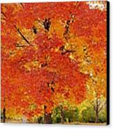 Park In Fall Canvas Print by Yoshiko Wootten