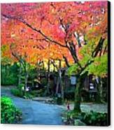 Path And Palette Canvas Print by Shawn Lyte