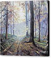 Path In The Woods Canvas Print by Andrei Attila Mezei