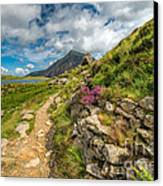 Path To Lake Idwal Canvas Print by Adrian Evans