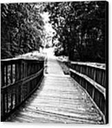 Peaceful Walkway Blackwhite Canvas Print by Stephanie Grooms