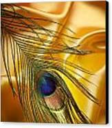 Peacock Feather Canvas Print by Jelena Jovanovic