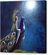 Peacock Princess II By Shawna Erback Canvas Print