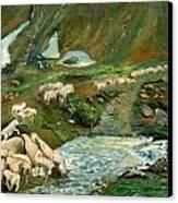 Pecore Canvas Print by Niki Mastromonaco