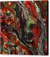 Pegasus Canvas Print by Dan Cope
