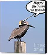 Pelican Birthday Card Canvas Print by Al Powell Photography USA