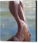 Pelican Brief Canvas Print by Sharon Burger
