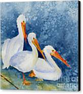 Pelicans At The Weir Canvas Print by Pat Katz