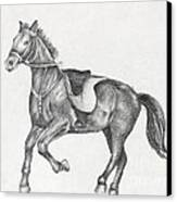 Pencil Drawing Of A Running Horse Canvas Print by Kiril Stanchev