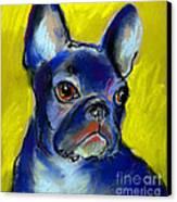 Pensive French Bulldog Portrait Canvas Print