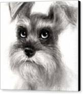 Pensive Schnauzer Dog Painting Canvas Print