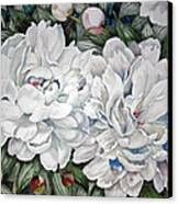 Peonies Love Ants Canvas Print by Helen Klebesadel