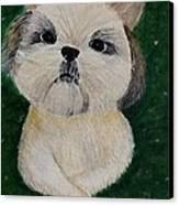 Pet Dog Canvas Print by Kat Poon