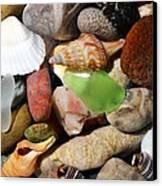 Petoskey Stones L Canvas Print by Michelle Calkins