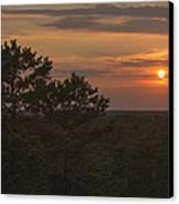 Pine Barrens Sunset Nj Canvas Print