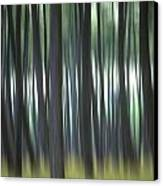 Pine Forest. Blurred Canvas Print