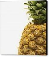 Pineapple Canvas Print by Darren Greenwood