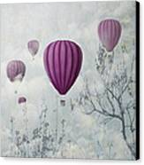 Pink Balloons Canvas Print by Jelena Jovanovic