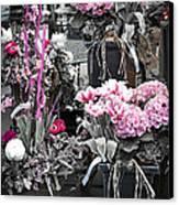 Pink Flower Arrangements Canvas Print by Elena Elisseeva
