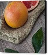 Pink Grapefruit Canvas Print by Sabino Parente