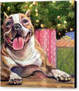 Pitbull Christmas Canvas Print by Susan Jenkins