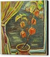 Plant In A Window Canvas Print by Ellen Howell