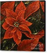 Poinsettia 2 Canvas Print by Elena  Constantinescu