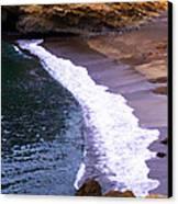 Point Lobos Canvas Print by Ron Regalado