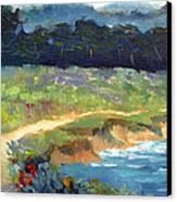 Point Lobos Trail Canvas Print by Karin  Leonard