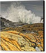 Point Lobos Wave Canvas Print by Julianne Bradford