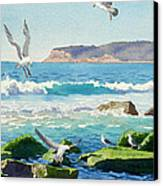 Point Loma Rocks Waves And Seagulls Canvas Print