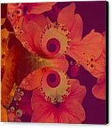 Polyanthus Spiral Canvas Print by Nancy Pauling