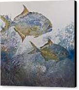 Pompano And Sea Fans Canvas Print