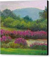 Pond At Willow Tree Farm Canvas Print