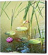 Pond  Reflections Canvas Print by Elmer Baez