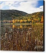 Pond With Autumn Foliage  Canvas Print