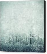 Pondering Silence Canvas Print by Priska Wettstein