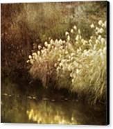 Pond's Edge Canvas Print