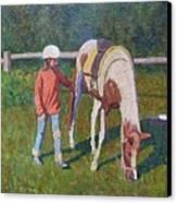 Pony Canvas Print by Terry Perham