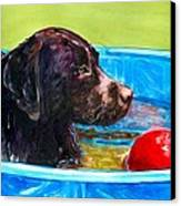 Pool Party Of One Canvas Print by Molly Poole