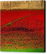 Poppies For The Fallen Canvas Print by Andrew Lalchan