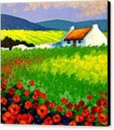 Poppy Field - Ireland Canvas Print by John  Nolan