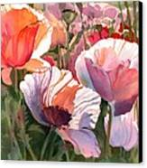 Poppy Madness Canvas Print by Kris Parins
