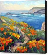 Poppy Path Pt. Lobos  Canvas Print by Karin  Leonard