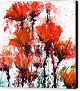 Poppy Splashes Canvas Print