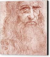 Portrait Of A Bearded Man Canvas Print by Leonardo da Vinci