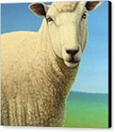 Portrait Of A Sheep Canvas Print by James W Johnson