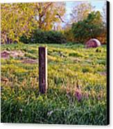 Post And Haybale Canvas Print by Tracy Salava
