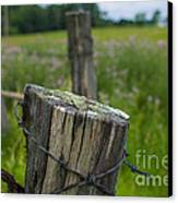 Post Script Canvas Print by The Stone Age