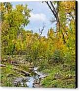 Poudre Walk-2 Canvas Print by Baywest Imaging